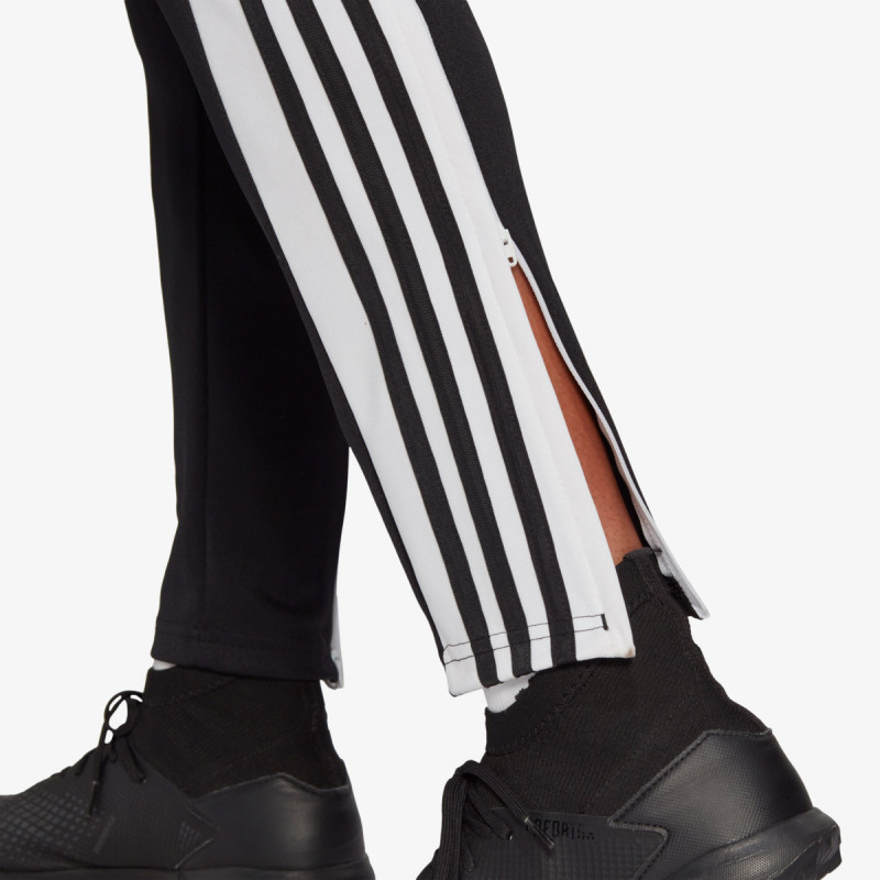 adidas SQ21 TR PNT